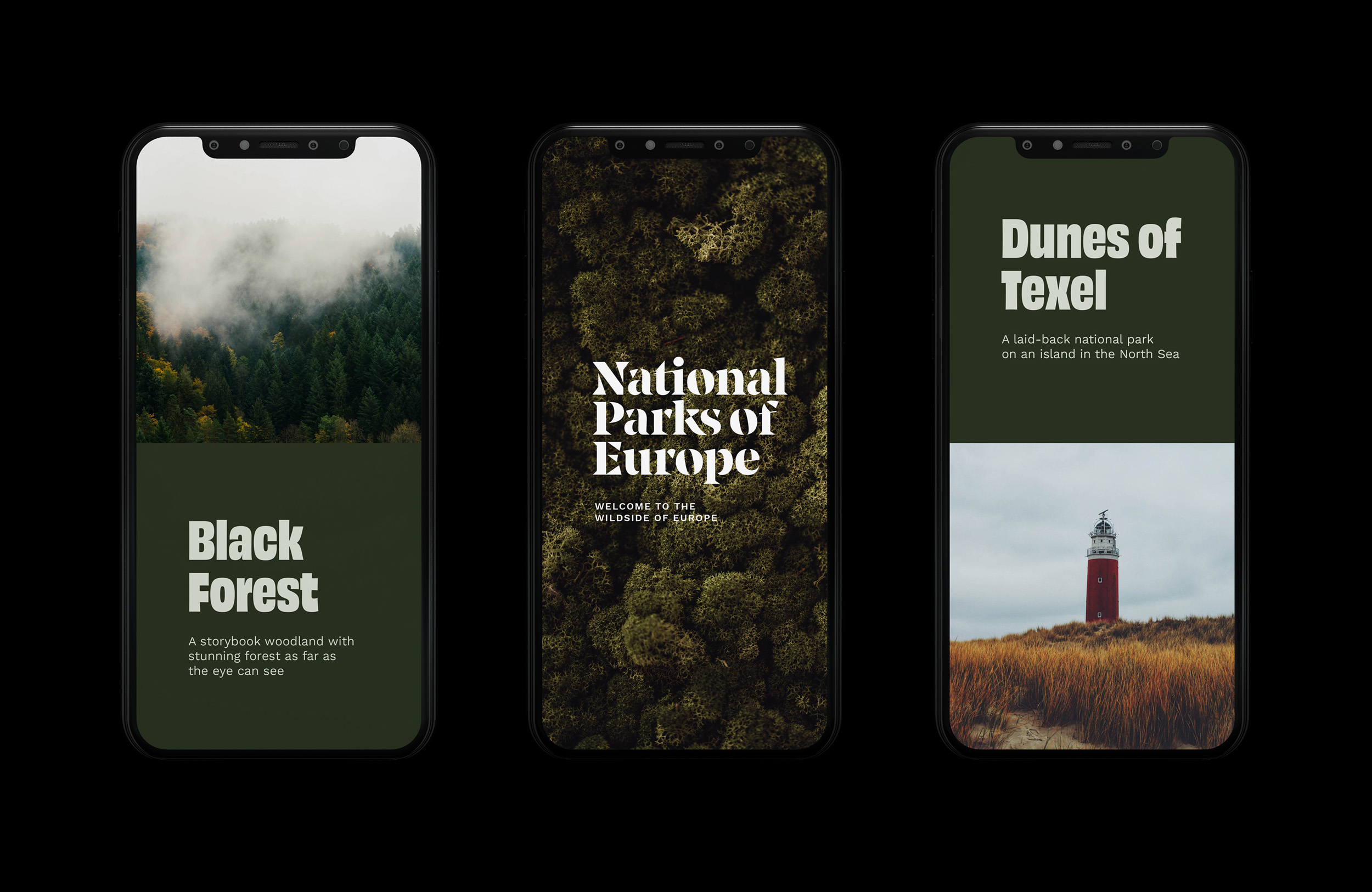 National Parks of Europe Logo graphic design typography artist