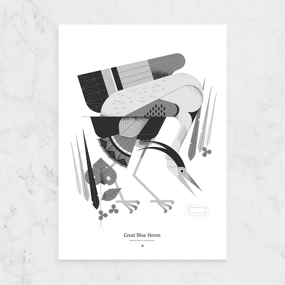 kopen grafisch ontwerp poster biologie anatomie vogel